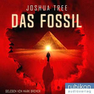 das-fossil-band-1-von-joshua-tree